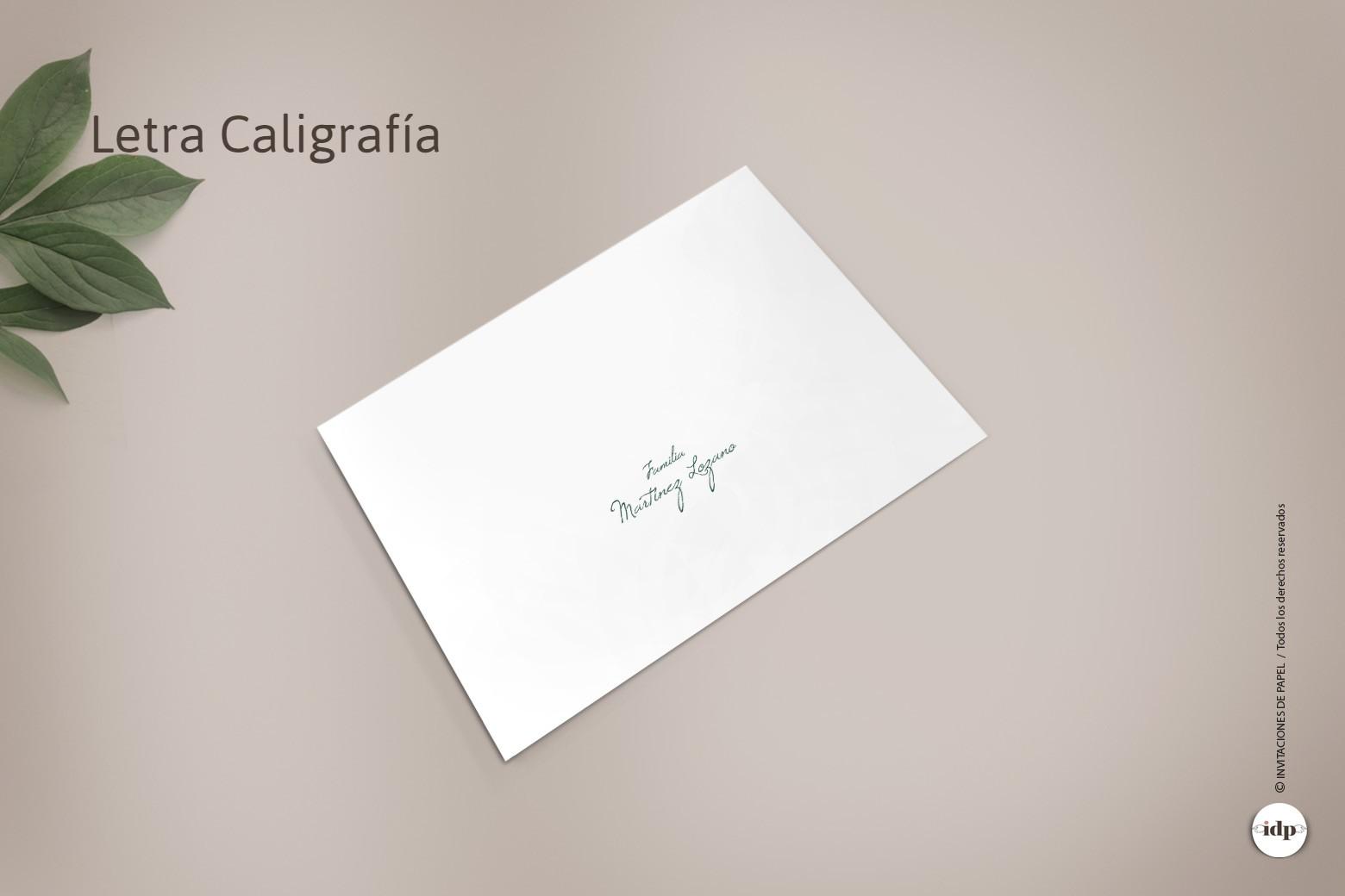 Imprimir los Sobres de la Boda Personalizados con los Nombres de cada Invitado - letra Caligrafía